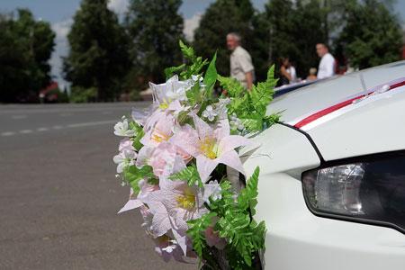 http://lancerx.ru/images/zh/zh_4.jpg